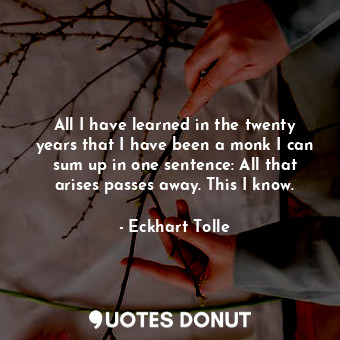 All I have learned in the twenty years that I have been a monk I can sum up in one sentence: All that arises passes away. This I know.