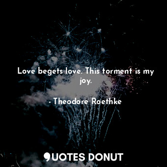 Love begets love. This torment is my joy.... - Theodore Roethke - Quotes Donut